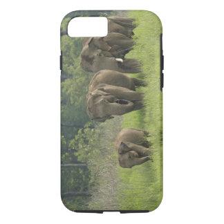 Coque iPhone 7 Sortir de famille d'éléphant d'Asie