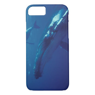 Coque iPhone 7 South Pacific, Tonga. baleine et veau de bosse