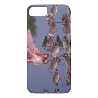 Coque iPhone 7 Spatule rose avec Willets en eau peu profonde