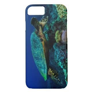 Coque iPhone 7 Tortue de mer de Hawksbill sur la Grande barrière