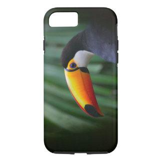 Coque iPhone 7 Toucan de Toco (Amérique du Sud), Panama