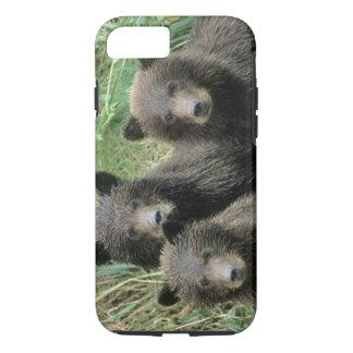 Coque iPhone 7 Trois ours gris CUB ou Coys (CUB de