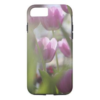 Coque iPhone 7 Tulipes, jardins de Keukenhoff, Hollandes