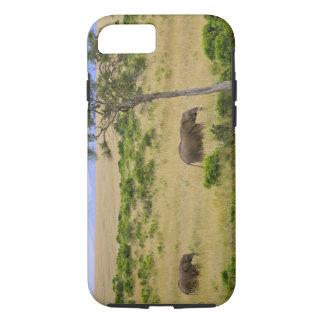 Coque iPhone 7 Un éléphant africain frôlant dans les domaines des