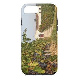 Coque iPhone 7 Vignobles, petites vignes de verdot et