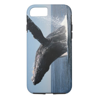 Coque iPhone 7 Violation adulte de baleine de bosse