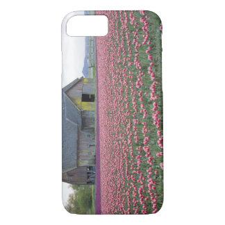 Coque iPhone 7 WA, vallée de Skagit, champ de tulipe et grange