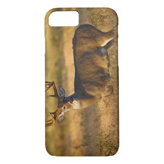 Coque iPhone 8/7 adulte Blanc-coupé la queue de cerfs communs