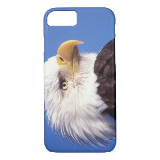 Coque iPhone 8/7 aigle chauve, leucocephalus de Haliaeetus, fin, 3