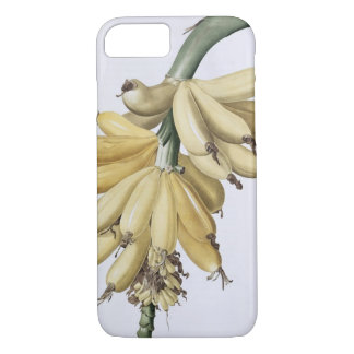 Coque iPhone 8/7 Banane, 1816