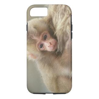 Coque iPhone 8/7 Bébé de singe de neige, Jigokudani, Nagano, Japon