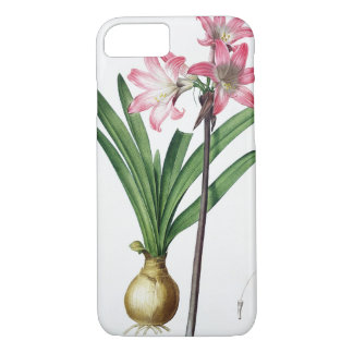 "Coque iPhone 8/7 Belladone d'amaryllis, de ""Les Liliacees"", engrav"