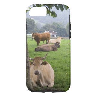 Coque iPhone 8/7 Bétail sur les terres cultivables rurales près de