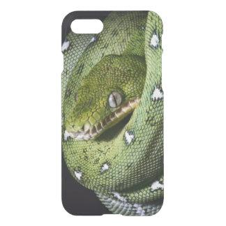 Coque iPhone 8/7 Boa vert de serpent vert d'arbre en Bolivie