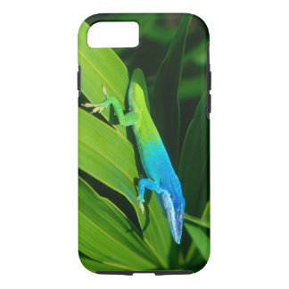 Coque iPhone 8/7 Cas de l'iPhone 7 d'allisoni d'Anolis