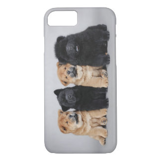 Coque iPhone 8/7 Cas de l'iPhone 7 de chiots de chow-chow