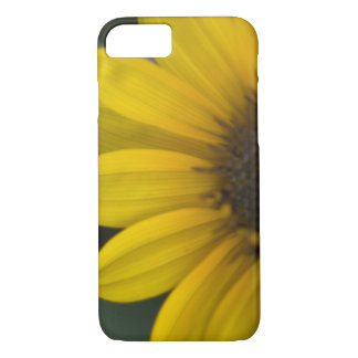 Coque iPhone 8/7 Cas de l'iPhone 7 de tournesol