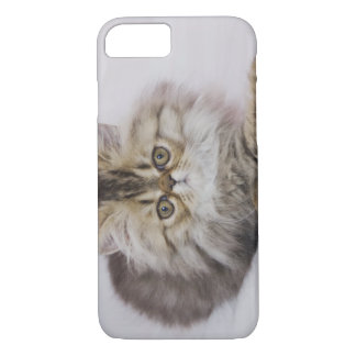Coque iPhone 8/7 Chat persan, catus de Felis, chat tigré de Brown,
