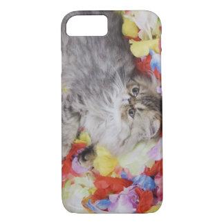 Coque iPhone 8/7 Chat persan, catus de Felis, chat tigré de Brown,