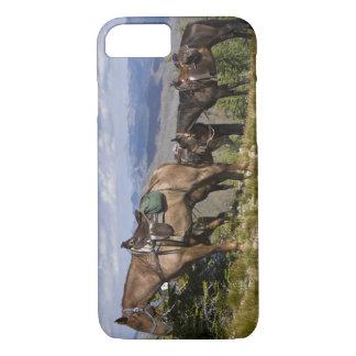 Coque iPhone 8/7 Chevaux (caballus de ferus d'Equus) à l'aperçu