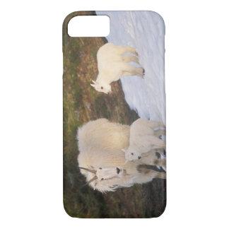 Coque iPhone 8/7 chèvres de montagne, Oreamnos américanus, mère et