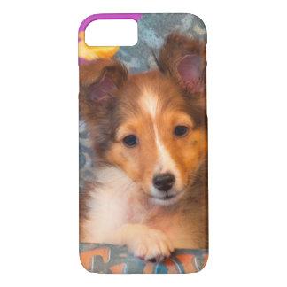 Coque iPhone 8/7 Chiot de chien de berger de Shetland dans une