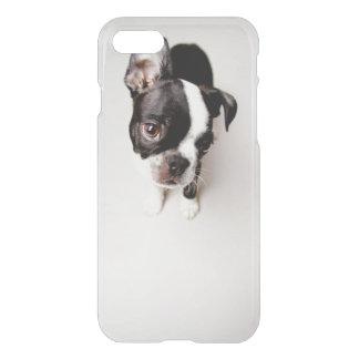Coque iPhone 8/7 Chiot d'Edison Boston Terrier