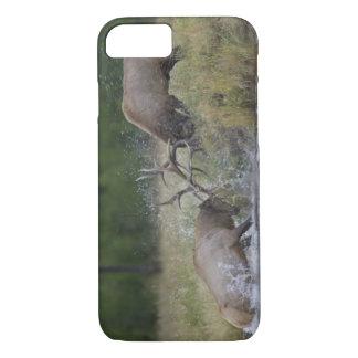Coque iPhone 8/7 Combat de taureaux d'élans, Yellowstone NP,