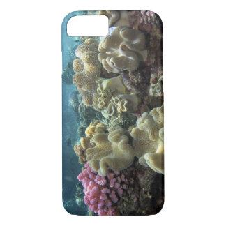 Coque iPhone 8/7 Corail, récif d'Agincourt, la Grande barrière de
