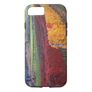 Coque iPhone 8/7 Couleurs rouges et jaunes intenses de chute sur