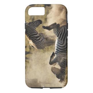 Coque iPhone 8/7 Cratère de Ngorongoro, Tanzanie, zèbre commun,