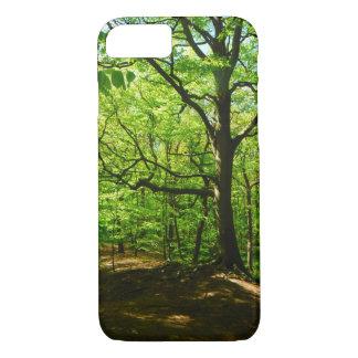 Coque iPhone 8/7 Dans le cas de téléphone en bois