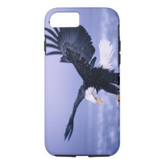 Coque iPhone 8/7 Eagle chauve débarquant l'étendre d'ailes dans une