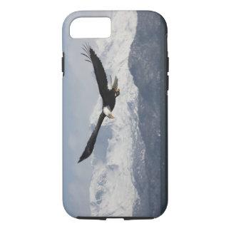 Coque iPhone 8/7 Eagle chauve en vol, leucocephalus de Haliaeetus,