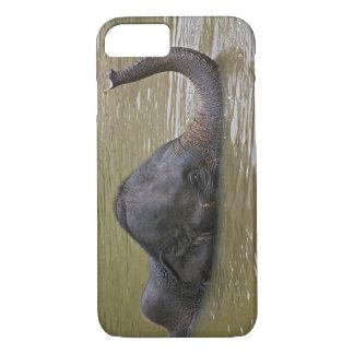Coque iPhone 8/7 Éléphant asiatique se baignant, éléphant