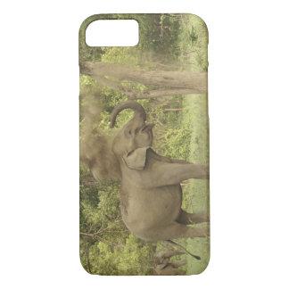 Coque iPhone 8/7 Éléphant indien/asiatique prenant le bain de la