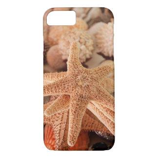 Coque iPhone 8/7 Étoiles de mer sèches vendues sous le nom de