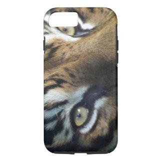 Coque iPhone 8/7 Fermez-vous d'un tigre de Sumatran de mâle adulte