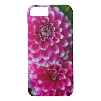 Coque iPhone 8/7 Fleurs roses et blanches de dahlia