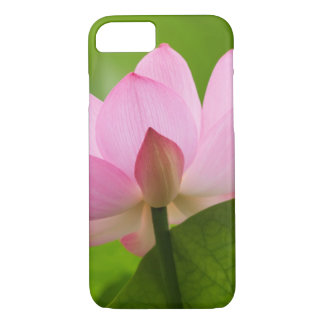 Coque iPhone 8/7 Franklin OR, jardin de l'eau de Perry, Lotus
