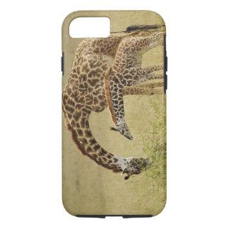 Coque iPhone 8/7 Girafe de masai de mère et de bébé, Giraffa