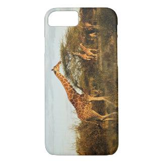 Coque iPhone 8/7 Girafes réticulées, camelopardalis 2 de girafe