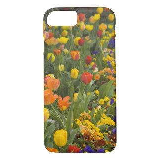 Coque iPhone 8/7 Glycines et tulipes dans le jardin de Dumbarton