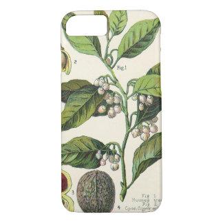 Coque iPhone 8/7 Graines vintages de fruit d'usine de noix de
