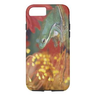 Coque iPhone 8/7 Grenouille et réflexions parmi des fleurs. Crédit
