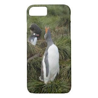 Coque iPhone 8/7 Île du sud de la Géorgie, Godthul. Pingouin de