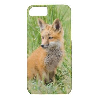 Coque iPhone 8/7 Kit de Fox rouge dans l'herbe près du repaire