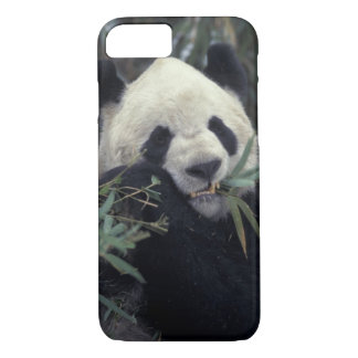 Coque iPhone 8/7 La Chine, réserve naturelle de Wolong.