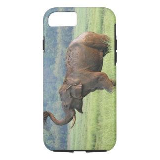 Coque iPhone 8/7 La poussière d'éléphant d'Asie se baignant,