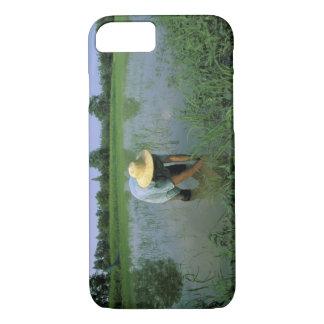 Coque iPhone 8/7 La Thaïlande, Sukhothai. Agriculteur de riz. M.